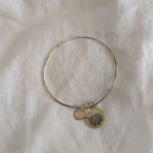 Alex and Ani Zest for Life Silver Bangle
